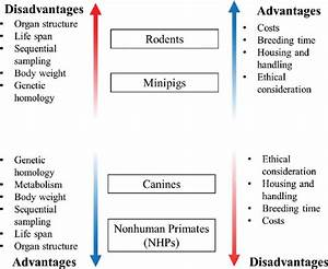 Advantages And Disadvantages Of Various Animal Models In