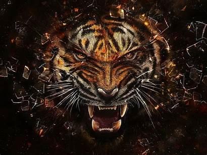 3d Tiger Glass Breaking Effect Abstract Desktop