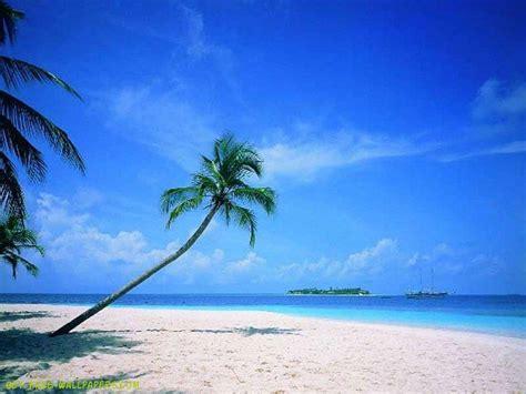 Printable Beach Scenes Quotes Quotesgram