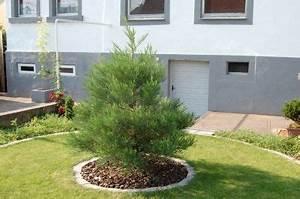 Bodendecker Statt Gras : juni 2011 ~ Sanjose-hotels-ca.com Haus und Dekorationen