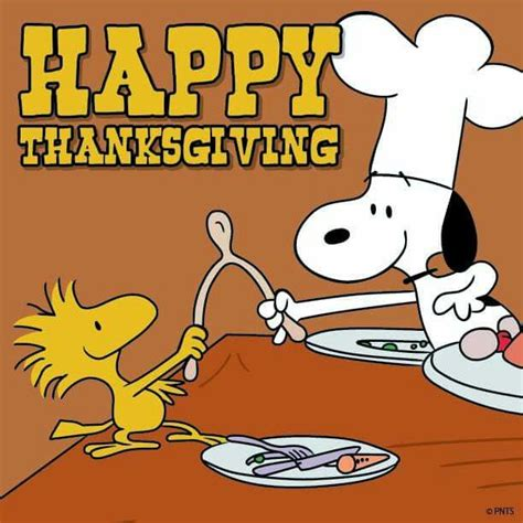 What we are going to Wish for on the Wishbone this Thanksgiving