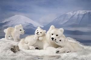 "Kösen-USA - 6090 ""Windie"" Arctic Wolf Pup Lying"