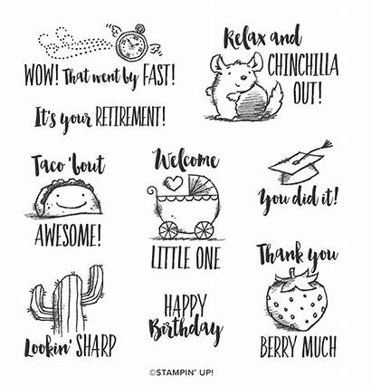 Witty Cisms Stamp Stampin Cling Bingo Class