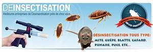 Produit Contre Les Guepes : produit contre les mites ~ Dailycaller-alerts.com Idées de Décoration