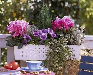 Plantes Et Fleurs Pour Balcon : le jardin en mode urbain blog ma maison mon jardin ~ Premium-room.com Idées de Décoration