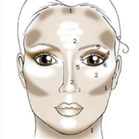 Pictures Of Different Types Of Highlights by Perfectwoman365 How To Contour And Highlight For