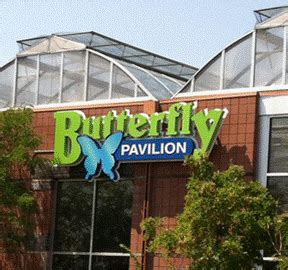 85876 Westminster Butterfly Pavilion Coupon by Butterfly Pavilion Discounts Coupon Offers