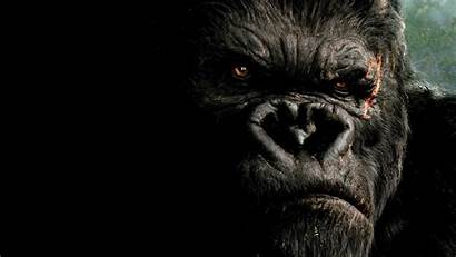 Kong King Wallpapers 1080 Movies Backgrounds 1920