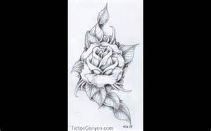 Realistic Rose Tattoo Outlines