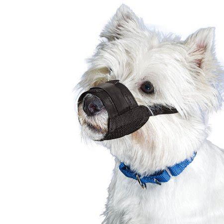 premier pet muzzles small breed black dog walmartcom