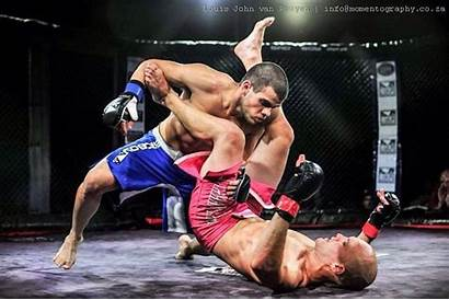 Cage Fighting Fight Tournament Sports Mma Mixed