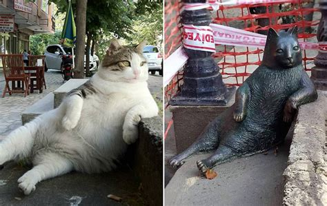 Famous Cat Honored With Its Own Statue At Its Favorite Spot