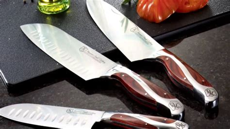 best kitchen knives uncategorized energized best brand of knives best brand