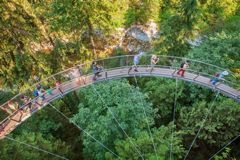 Capilano Suspension Bridge Landsea Tours And Adventures