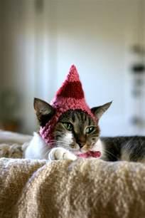 Cat Elf Costume