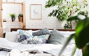 Pflanzen Für Schlafzimmer : pflanzen f r das schlafzimmer ir linger gmbh co kg ~ Eleganceandgraceweddings.com Haus und Dekorationen
