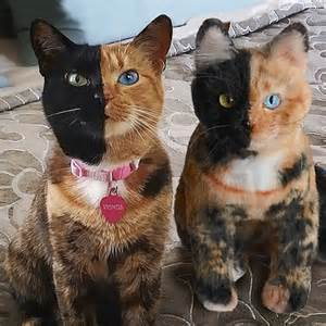 this company creates exact plush replicas of your pets