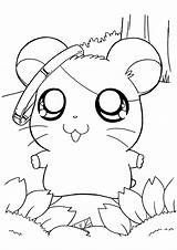 Coloring Hamtaro Pages sketch template
