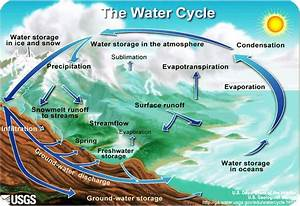 Reading  Phases Of The Hydrologic Cycle