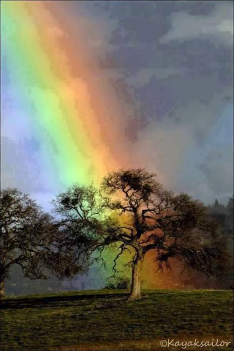 morning  colorful rainbow xcitefunnet