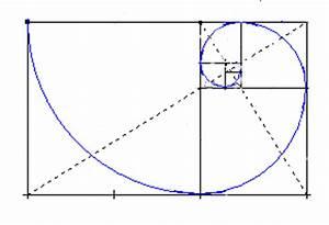 Phi Berechnen : blog epso matem ticas fotograf a fibonacci ~ Themetempest.com Abrechnung