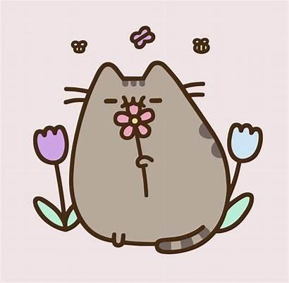 Pusheen Cat Spring Pastel Kitty Stickers Kawaii