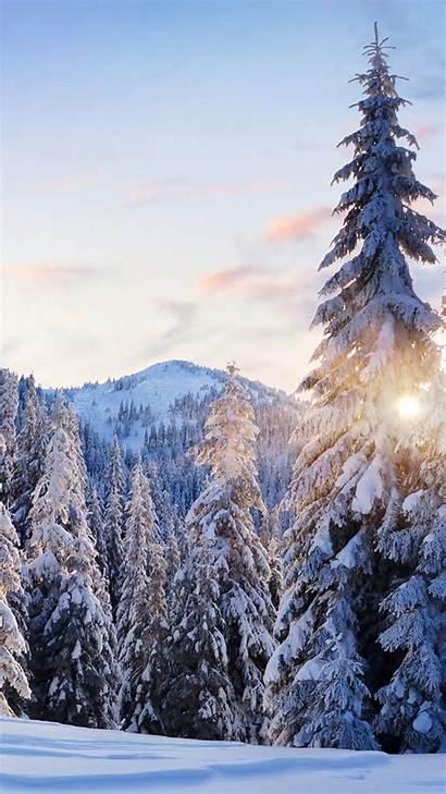 Winter Mobile Iphone Desktop Christmas Wallpapers Plus