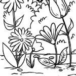 ausmalbilder pflanzen