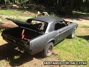 Mustang Roller Craigslist | Convertible Cars