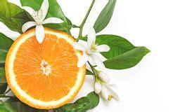 Orange Fruit With Half Flower White Background