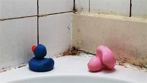 comment eviter la moisissure dans la salle de bain With moisissure carrelage salle de bain