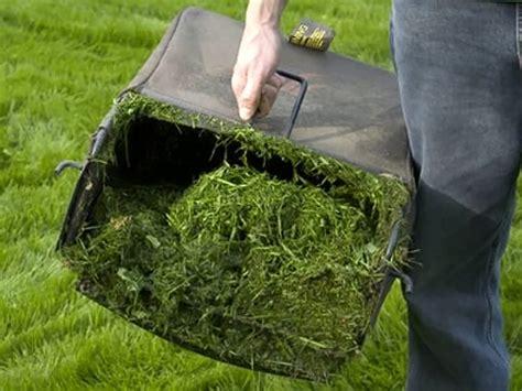 vasi da giardino in plastica castelbuono ambiente informazioni sul servizio di