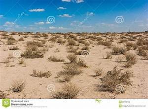 Sultry Arabian Desert In The Afternoon Stock Images ...