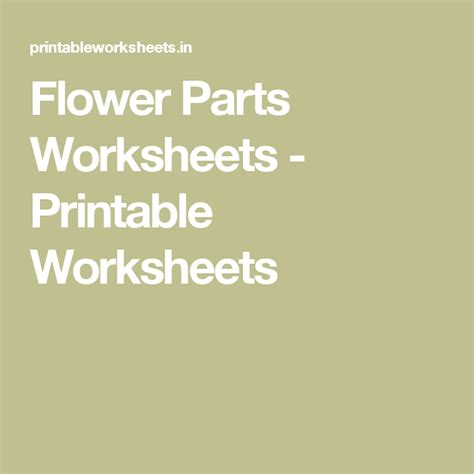 flower parts worksheets printable worksheets