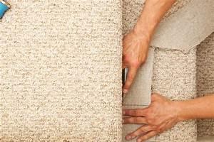 Haare Vom Teppich Entfernen : teppich von treppe entfernen so wird 39 s gemacht ~ Bigdaddyawards.com Haus und Dekorationen