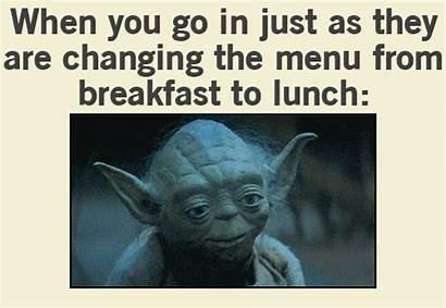 Yoda Meme Gifs Giphy Funny Viral Animated