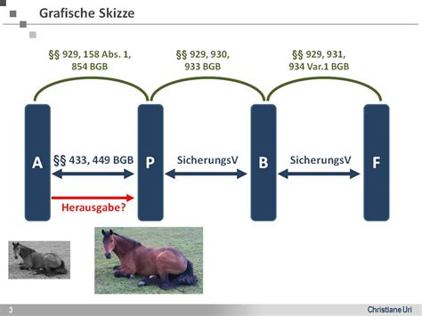 hochschulwiki fallbeispiel  wem gehoert pferdinand
