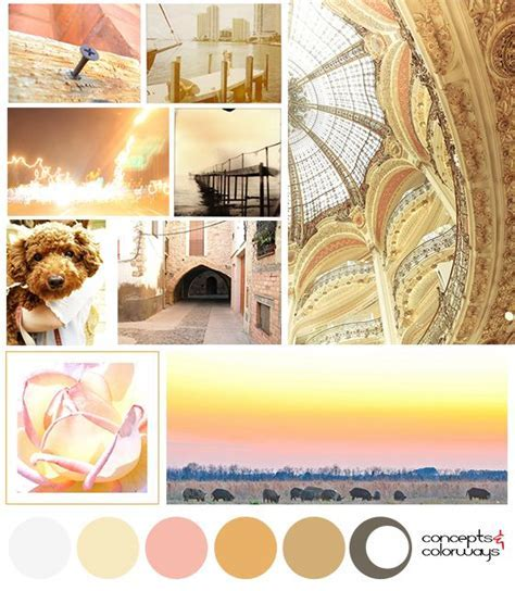 1000  images about Mood Boards on Pinterest   Green
