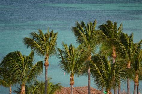Aruba Tiki Huts by Tiki Huts On The Picture Of Aruba Marriott Resort