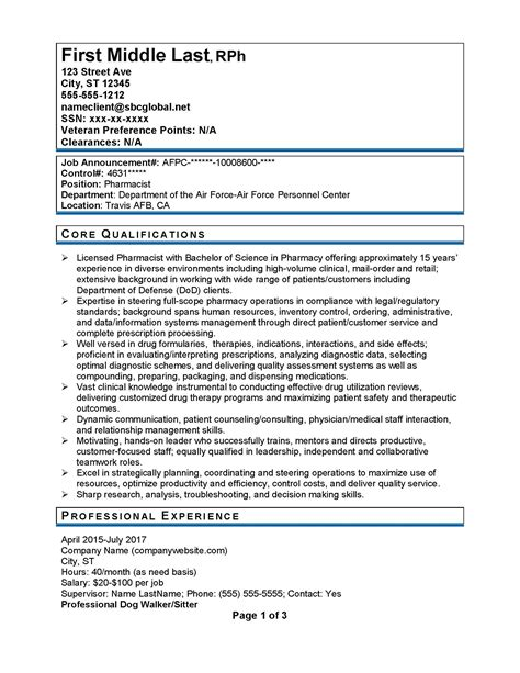 Federal Government Resume by Federal Government Resume Sles