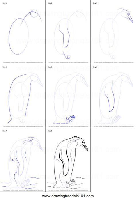 draw  emperor penguin printable step  step