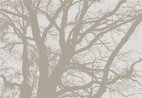 chambre en gris et blanc spécialiste français arbre asie salon chambre