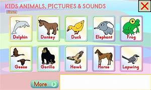 Kids Animals Pictures & Sounds - Android Apps on Google Play