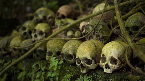 human skull hd wallpaper wallpaper studio  tens