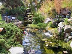 Water Garden Water Garden Design 2 Here Is How To Design The Perfect Water Garden