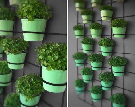 wall mounted herb garden indoor gardening