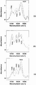 Ftir Spectra In The Base Double Bond Stretching Vibration