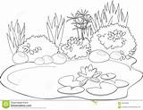 Pond Animals Coloring Pages Water Lily Printable Illustration Vector Print sketch template