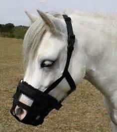 Pony Grazing Muzzle