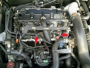 Moteur 2 0 Hdi : ou sont les bougies de prechauffage sur moteur rhz dw10 2 0 hdi 110 passion ~ Medecine-chirurgie-esthetiques.com Avis de Voitures